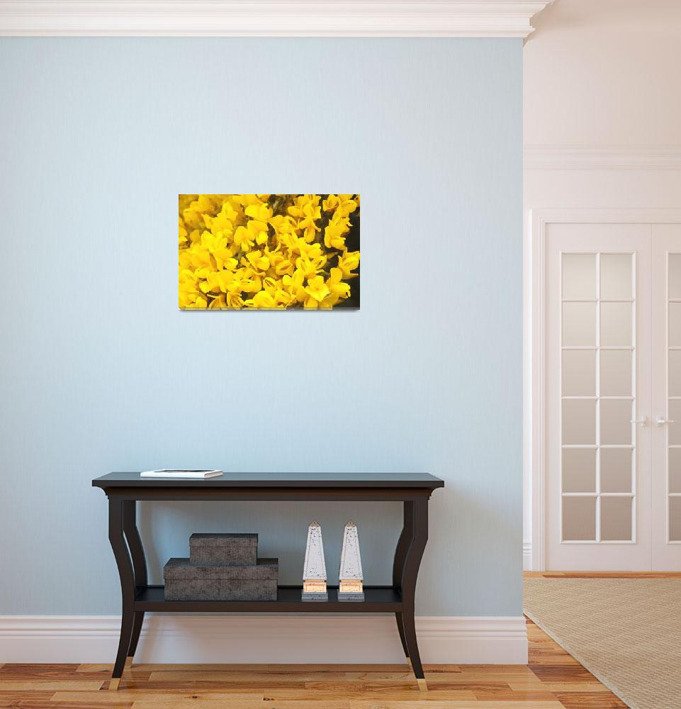 """""""Yellow heather&quot  (2007) by kimberleypowell"""
