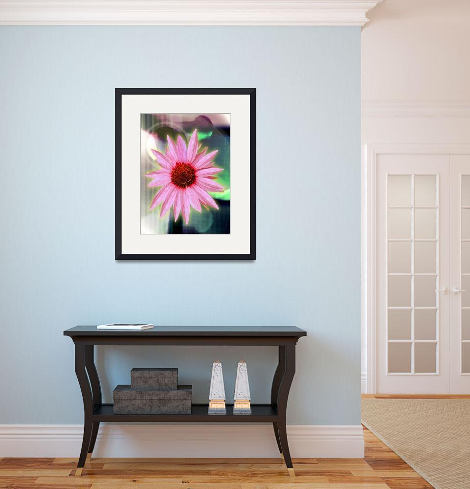 """""""Echinacea&quot  (2008) by karmadreams"""