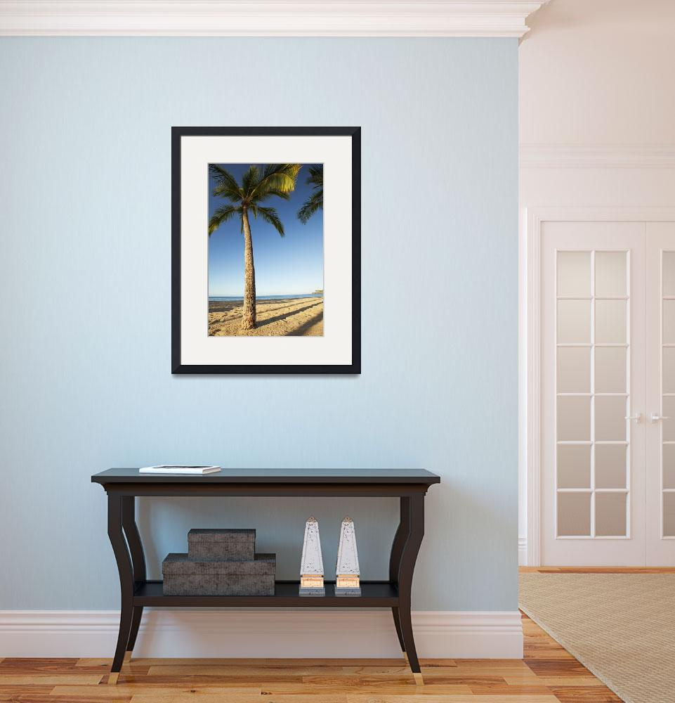 """Hawaii, Lanai, Hulope Beach, Tall Palm Trees On A&quot  by DesignPics"