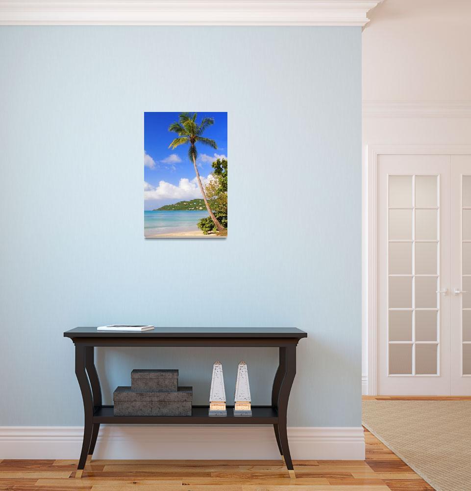 """Magens Bay Beach, St. Thomas USVI""  (2013) by RoupenBaker"