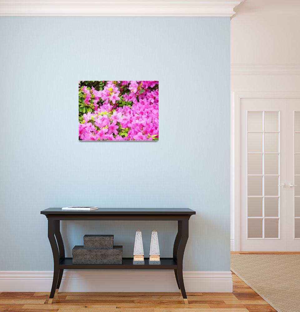 """""""Christmas Gift Gallery PINK AZALEAS Art Gifts&quot  (2009) by BasleeTroutman"""