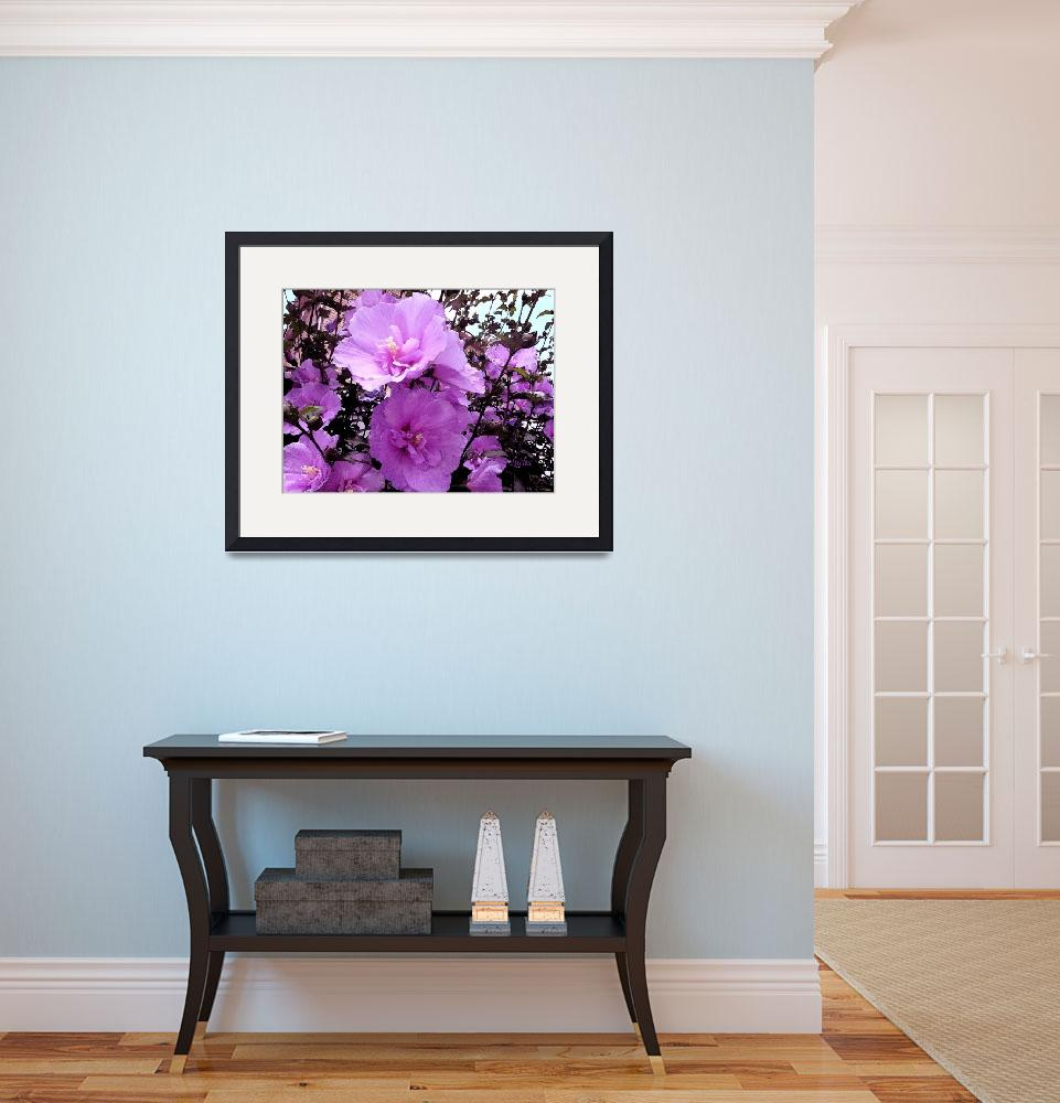 """""""Hot Pink flowers Bayterrace&quot  (2013) by Lucine"""