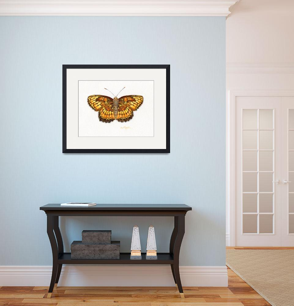"""""""Theona Checkerspot&quot  (2008) by LisaMclaughlin"""