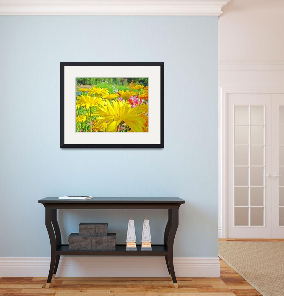 """Daisies Field art prints Yellow Daisy Flowers&quot  (2010) by BasleeTroutman"