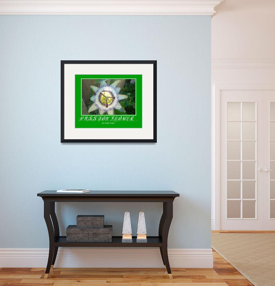 """""""Passion Flower Poster&quot  by rgtmum"""