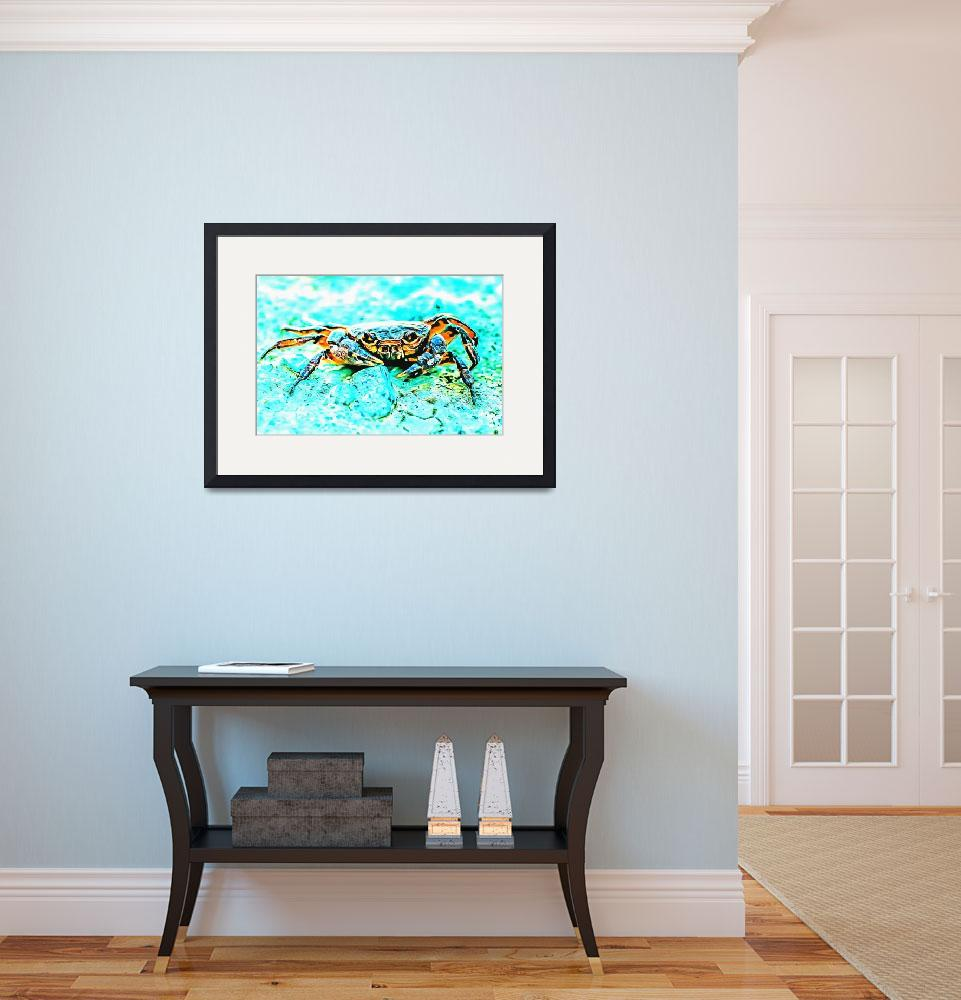 """""""Teal Blue Crab""""  (2015) by MRevell"""