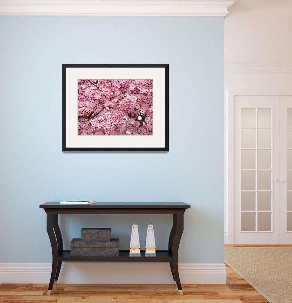 """""""TREE BLOSSOMS Pink Spring Trees Flowers Artwork&quot  (2009) by BasleeTroutman"""