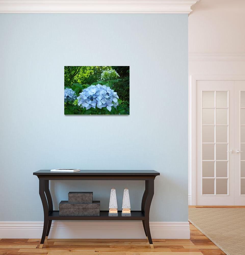"""BLUE Hydrangea FLOWERS Art Summer Blooms&quot  (2009) by BasleeTroutman"