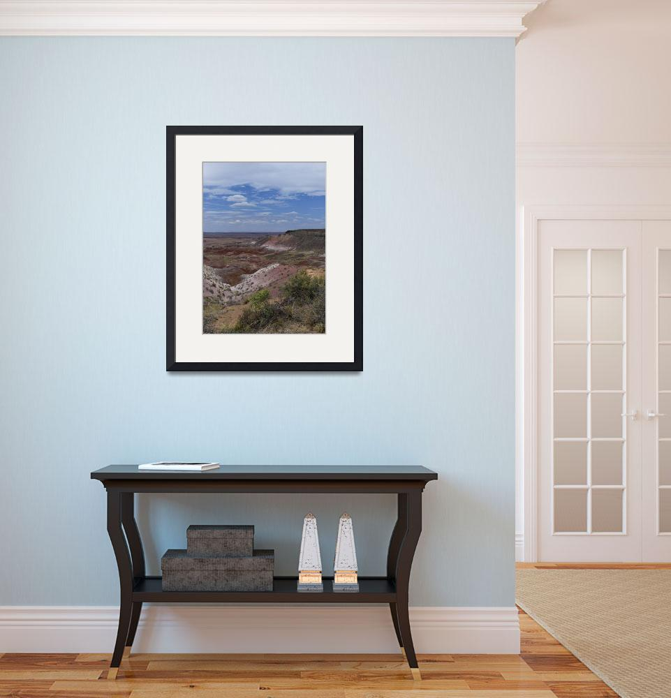 """""""Painted Desert&quot  (2013) by jacquelineevans"""