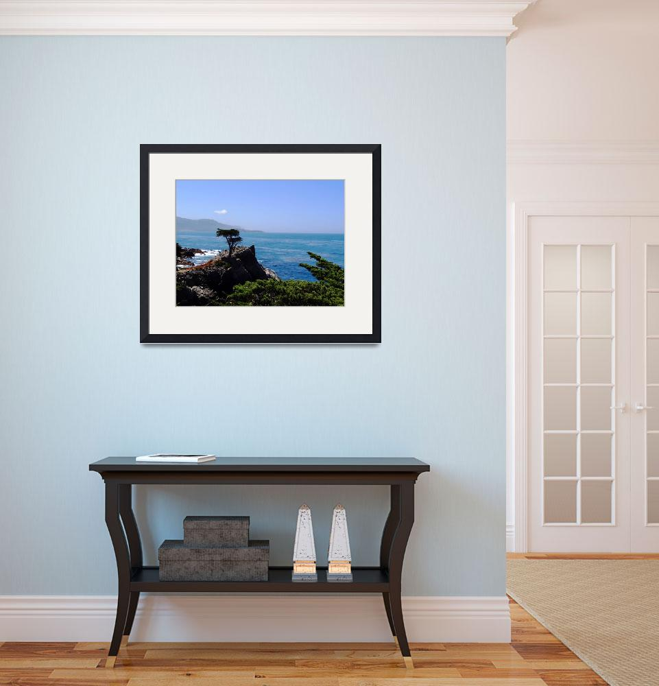 """""""Lone Cypress Point""""  (2011) by sdeighan"""