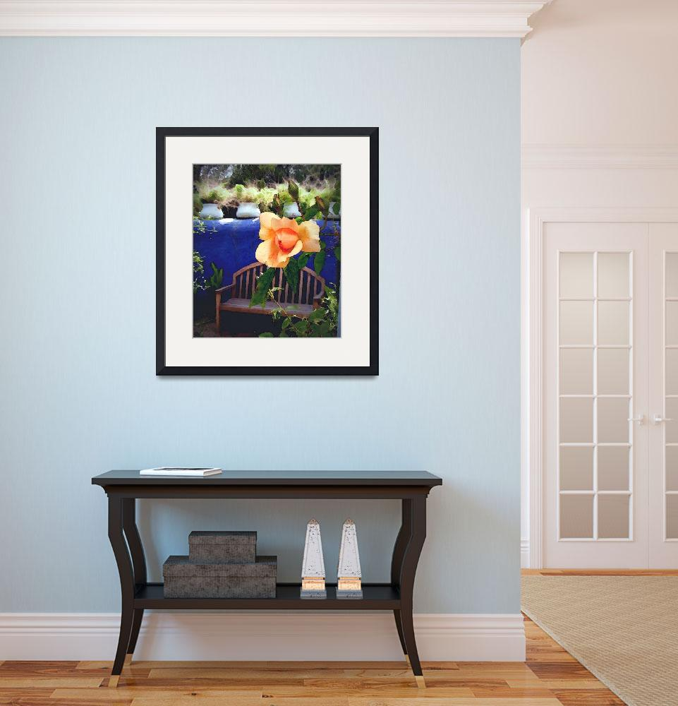 """""""Rose with Blue Wall and Bench&quot  by Kirby"""