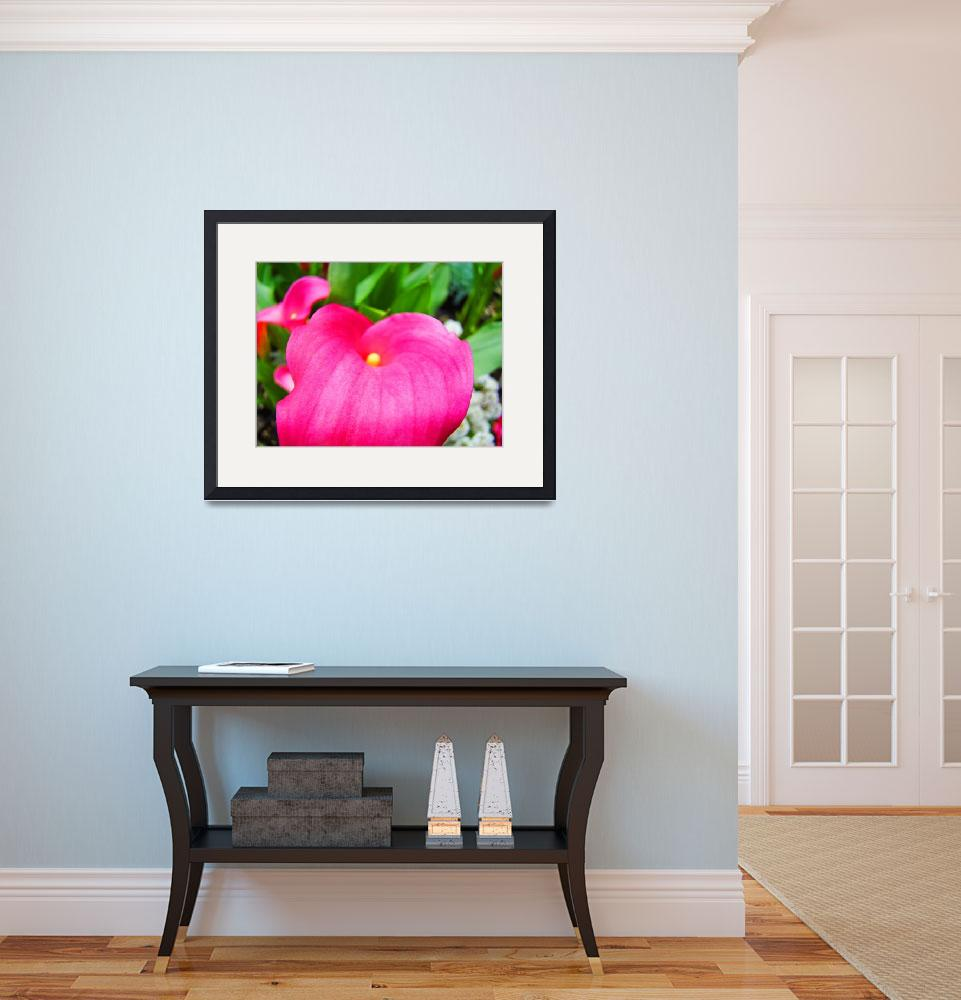 """""""Pink Lily Flower Floral art prints Baslee Troutman&quot  (2010) by BasleeTroutman"""