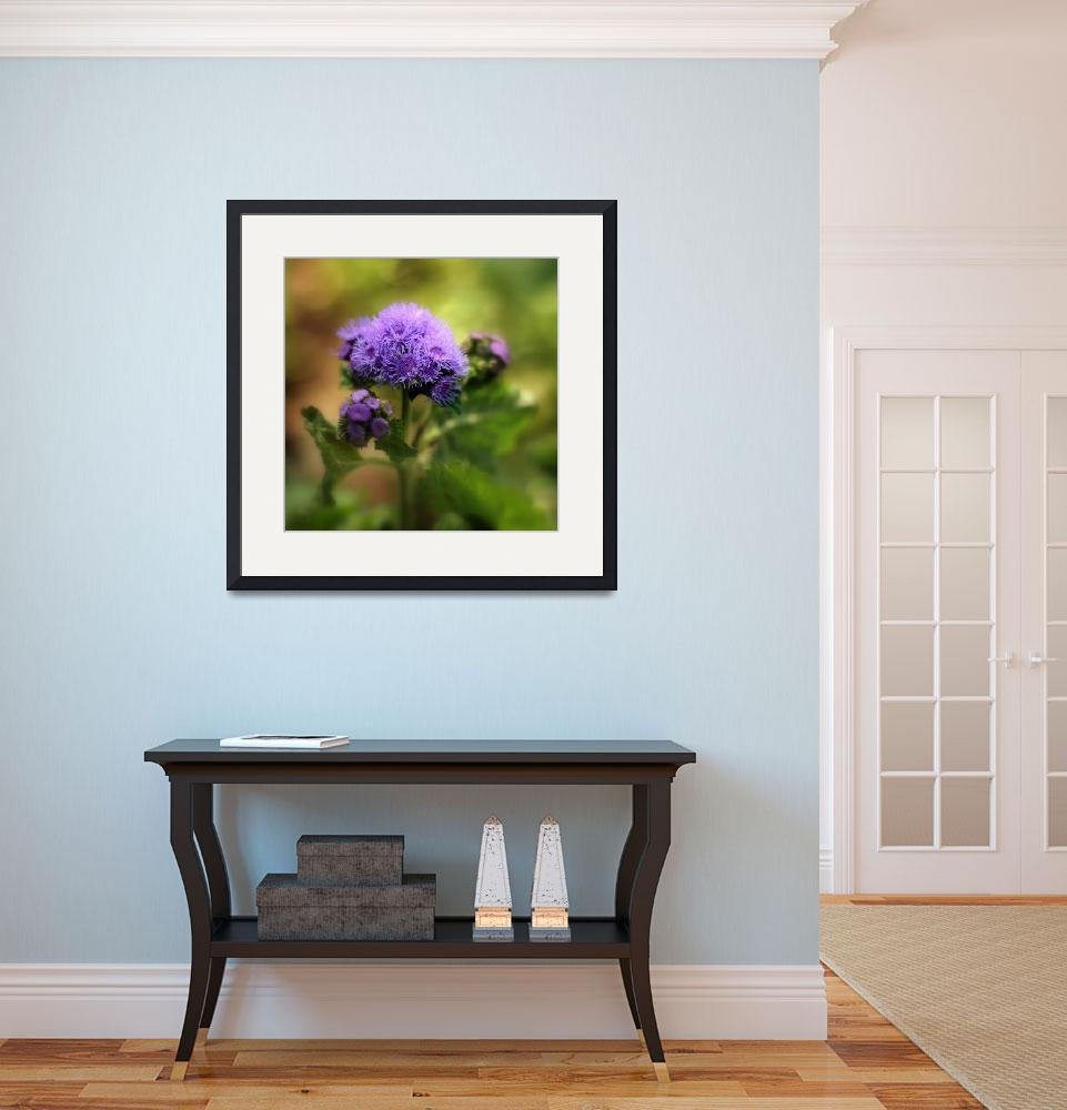 """""""Ageratum&quot  (2014) by JessicaJenney"""