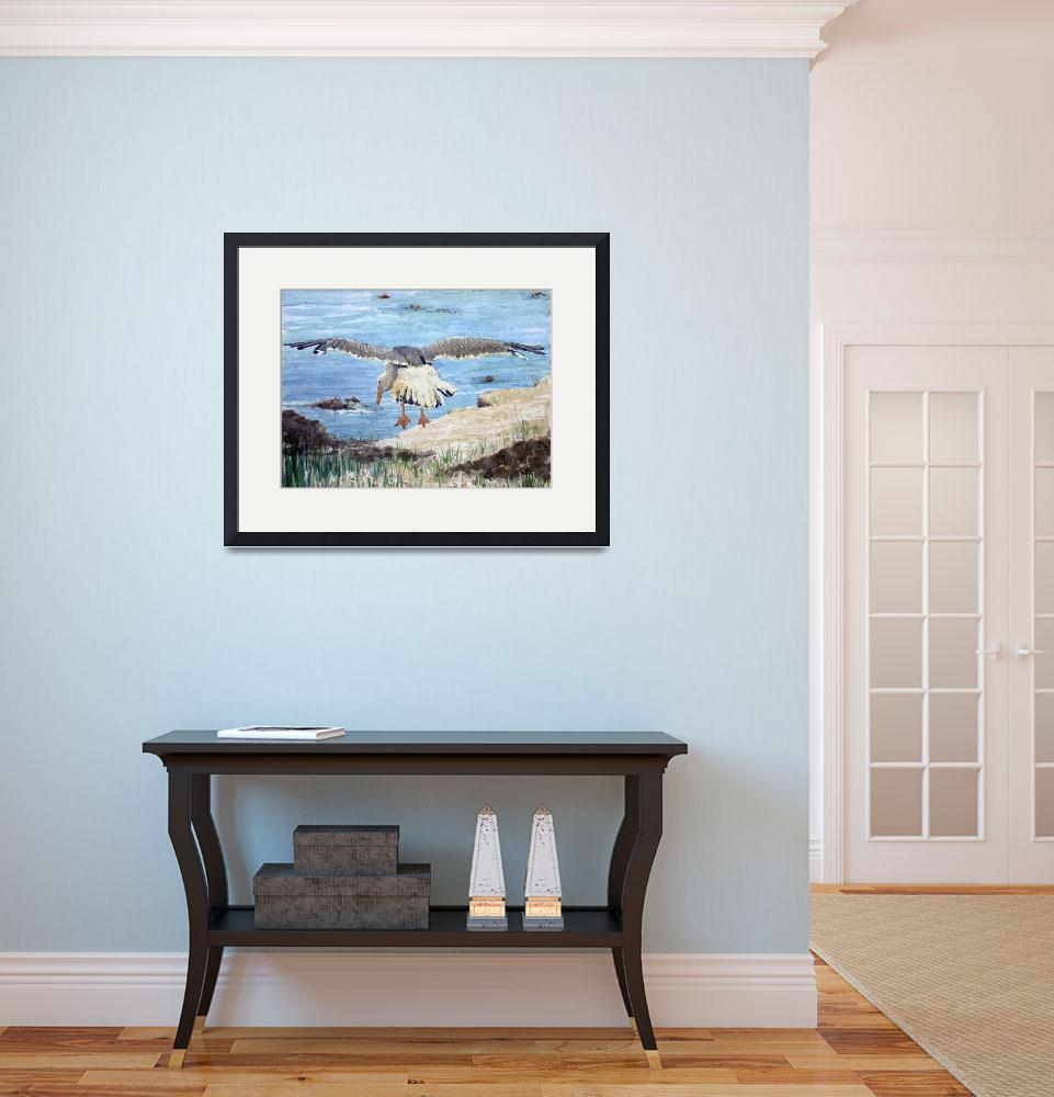 """Gull on the Washington coast&quot  (1992) by sboyle"
