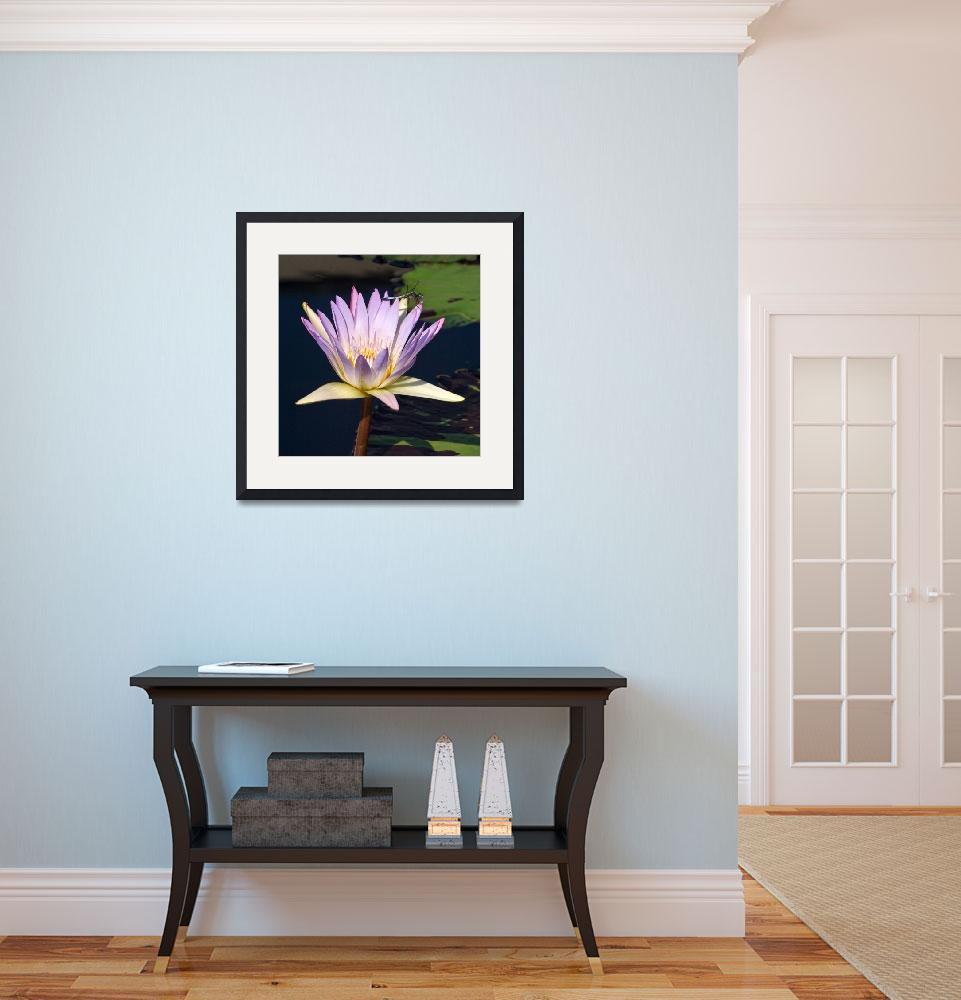 """""""Lavender Waterlily Turquoise Dragonfly&quot  (2016) by LightHeart"""