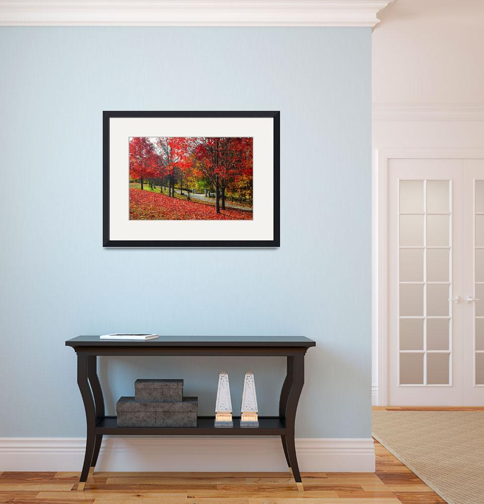 """""""Autumn in New England&quot  (2011) by biriart"""