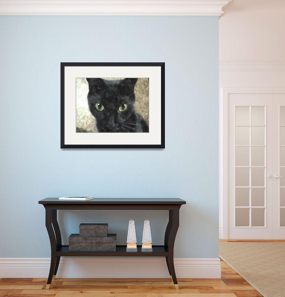 """""""Black Cat Staring&quot  (2010) by Dvad78"""
