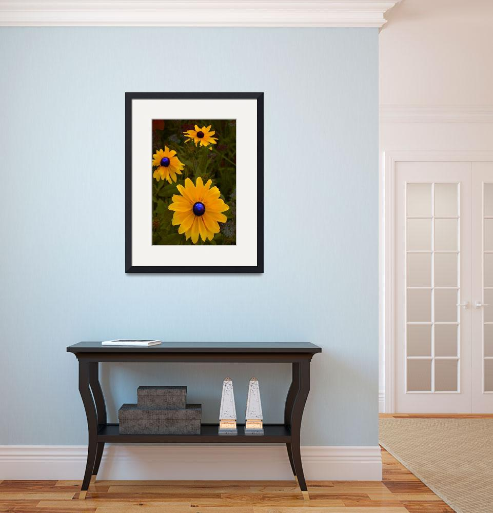 """""""Blue Eyed Susan&quot  (2011) by eGiclee"""