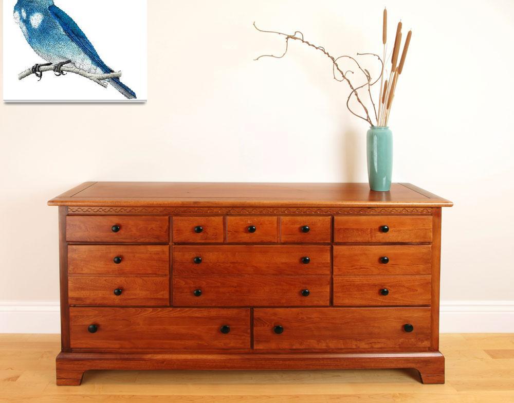 """Mountain Bluebird&quot  by inkart"