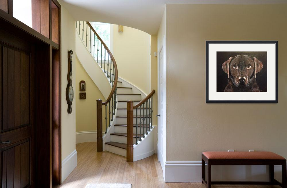 """""""Chocolate Labrador&quot  by RTidwell"""