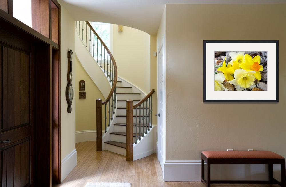 """""""Daffodils 25 Daffodil Flowers Bouquet Spring Art&quot  (2009) by BasleeTroutman"""