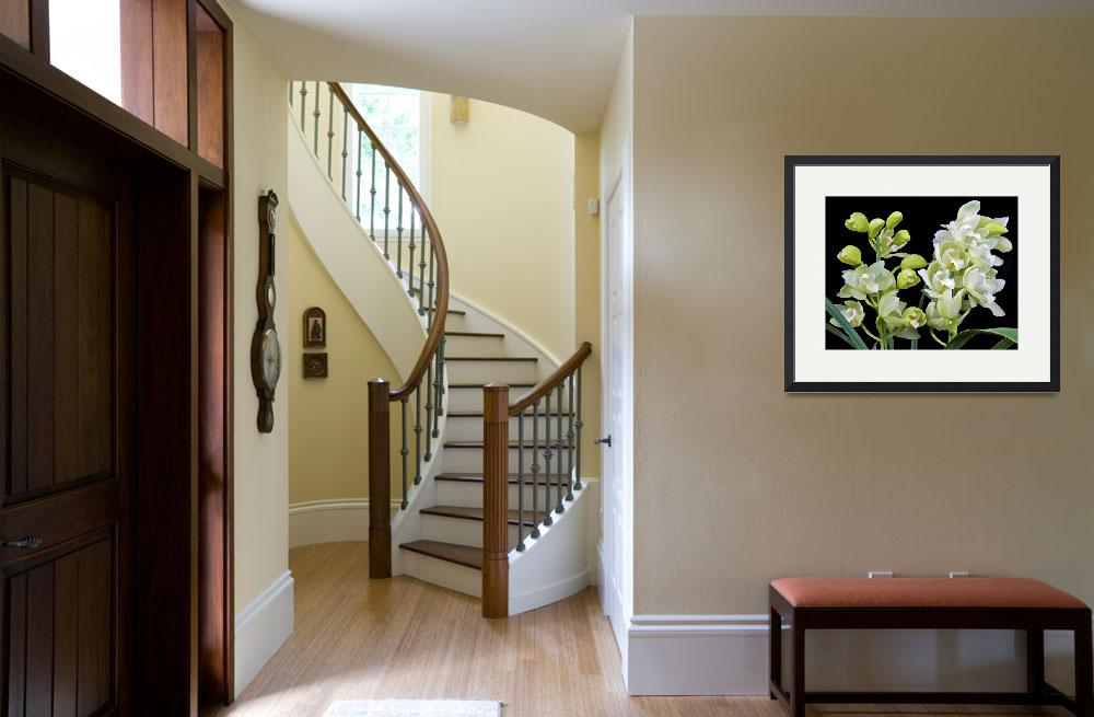 """""""White Cymbidium Orchid&quot  (2010) by ImageArt-Photography"""