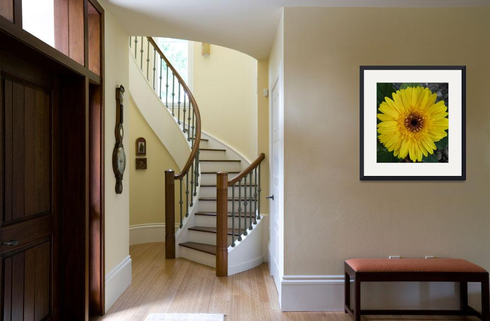 """""""yellow flower 2&quot  (2010) by sb1photography"""