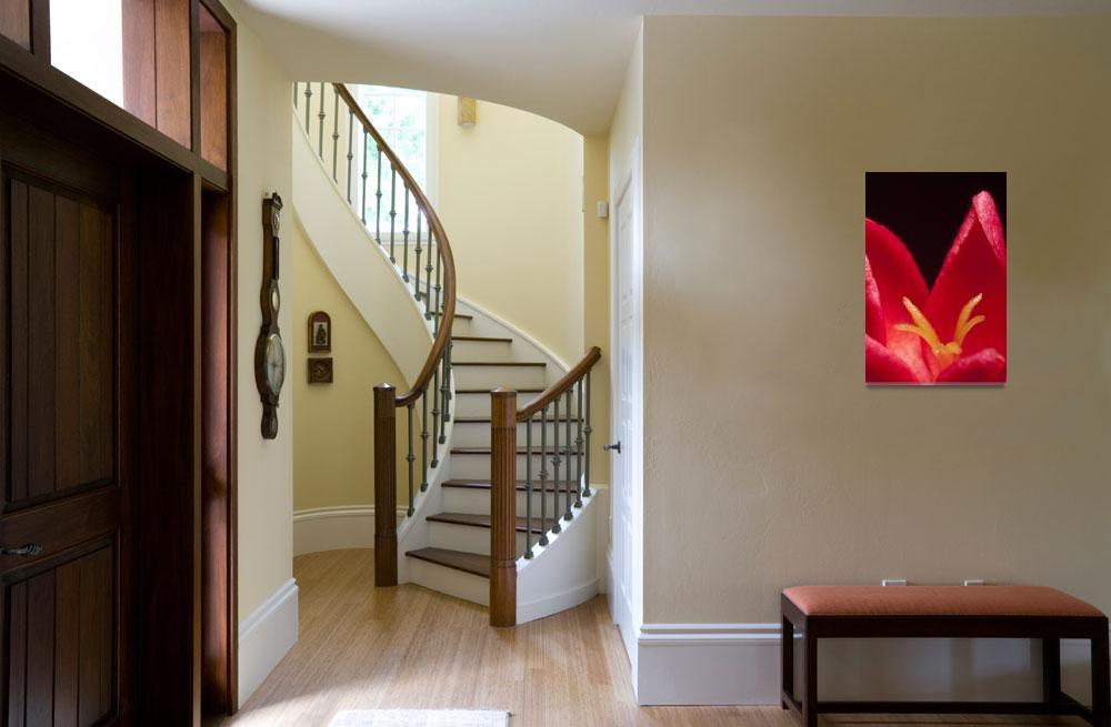 """""""Red petals""""  (2010) by sparda"""