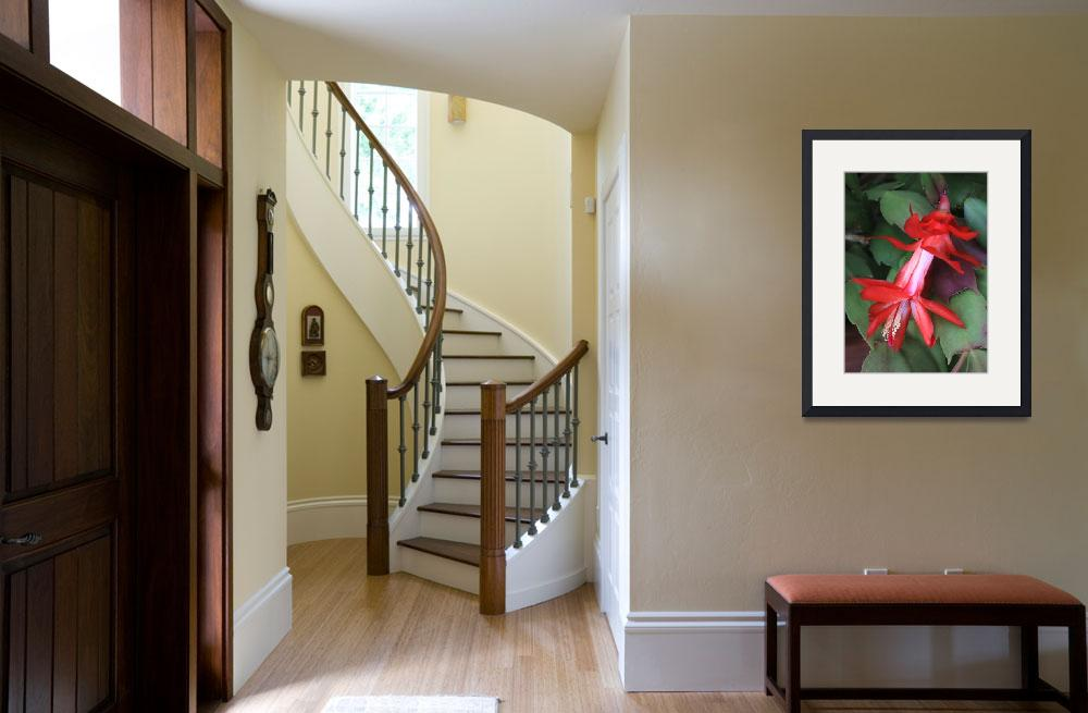 """""""Christmas Cactus 2&quot  (2014) by Groecar"""