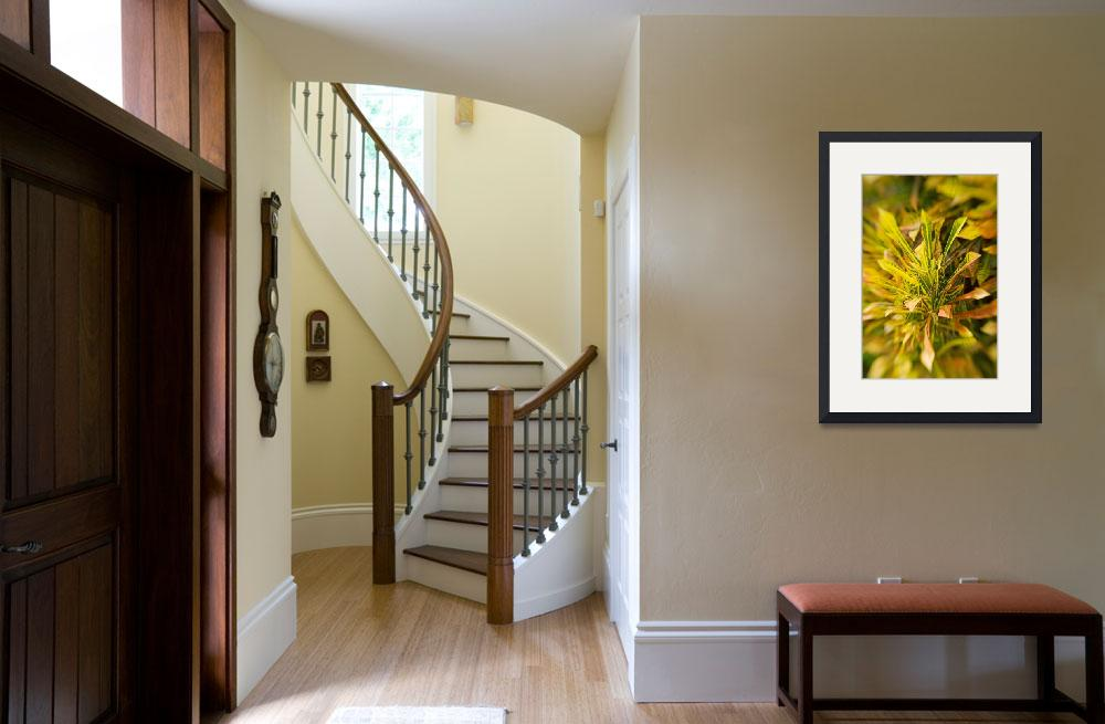"""""""Selective Focus On Yellow Croton Leaves&quot  by DesignPics"""