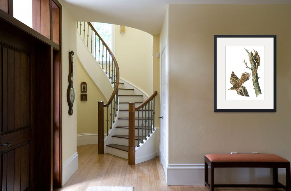 """Brown Creeper Bird Audubon Print&quot  by ArtLoversOnline"