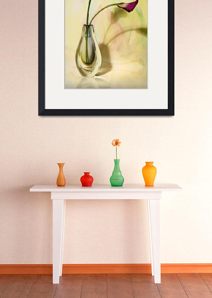 """""""Glass Vase With Calla Lilies&quot  (2008) by cfu1"""