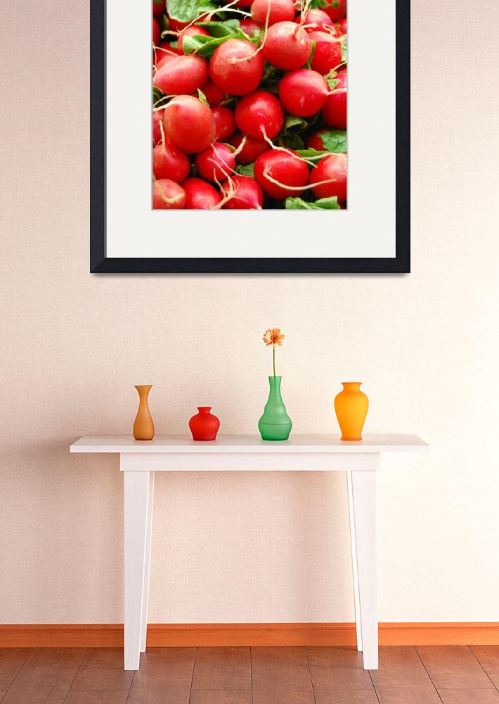 """""""Radishes&quot  (2008) by SMicheleSmith"""