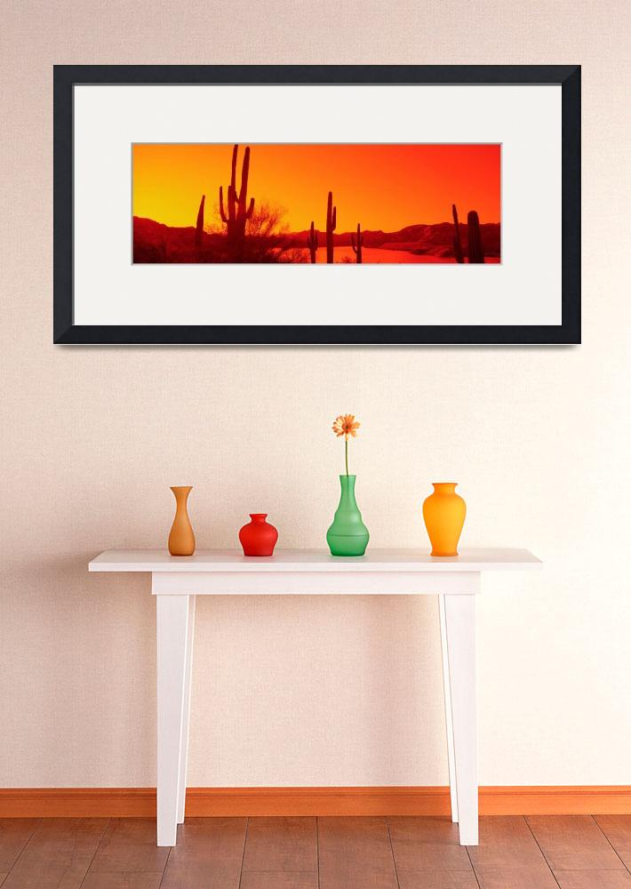 """Silhouette of Saguaro cacti at sunrise""  by Panoramic_Images"
