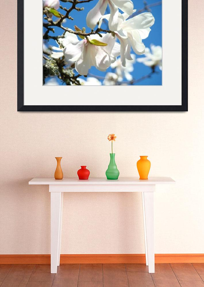 """Floral art White Magnolia Tree Flowers Blue Sky""  (2011) by BasleeTroutman"