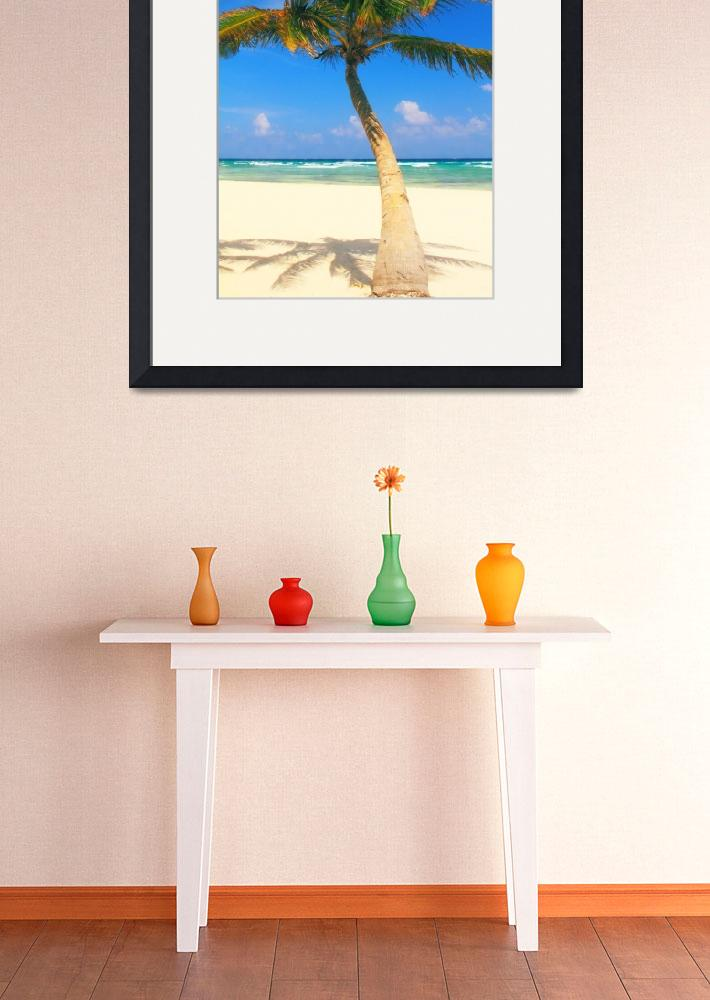 """""""Palm Tree, Beach and Ocean, Playa Del Carmen&quot  (2010) by RoupenBaker"""