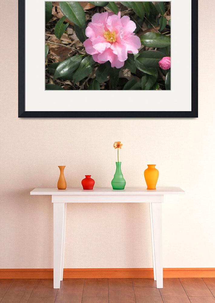"""""""Pink Flower&quot  (2010) by ValeriesGallery"""