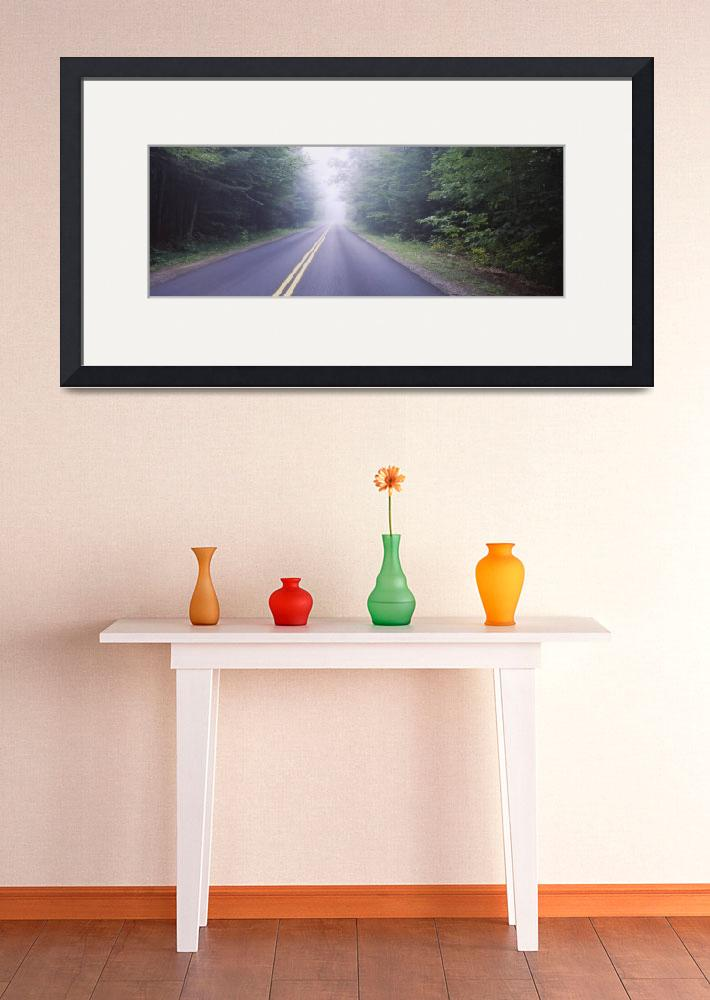 """""""Road passing through a forest&quot  by Panoramic_Images"""