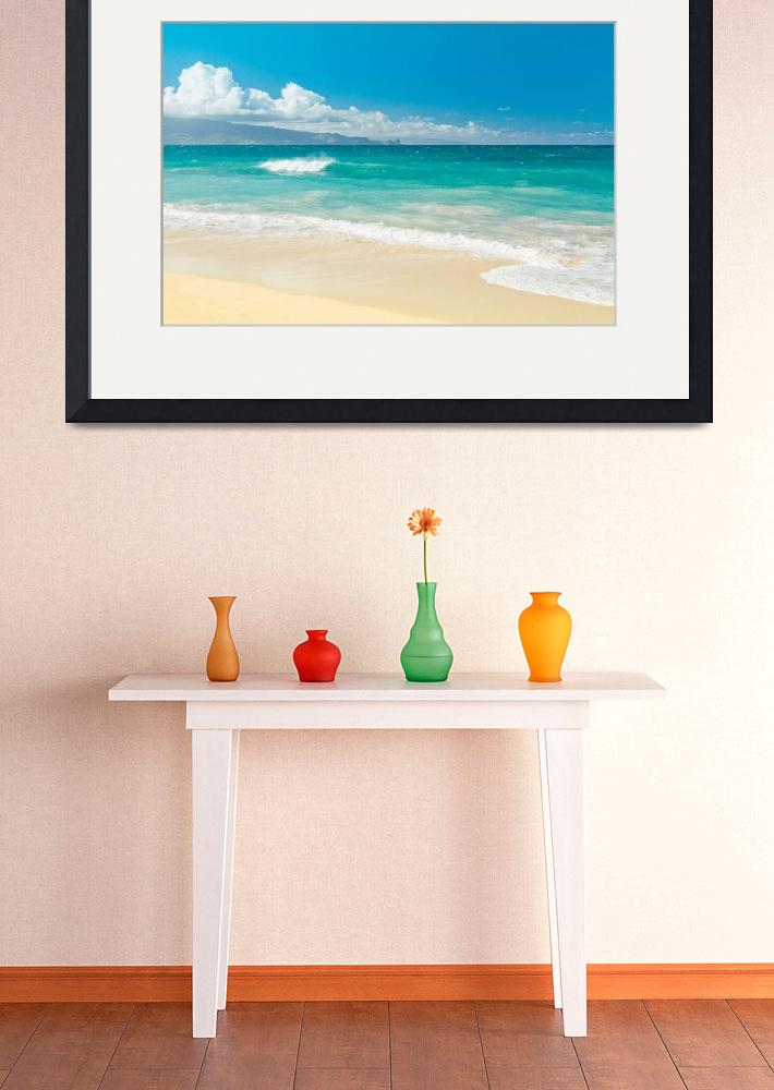 """Hawaii Beach Treasures&quot  (2015) by sharonmau"
