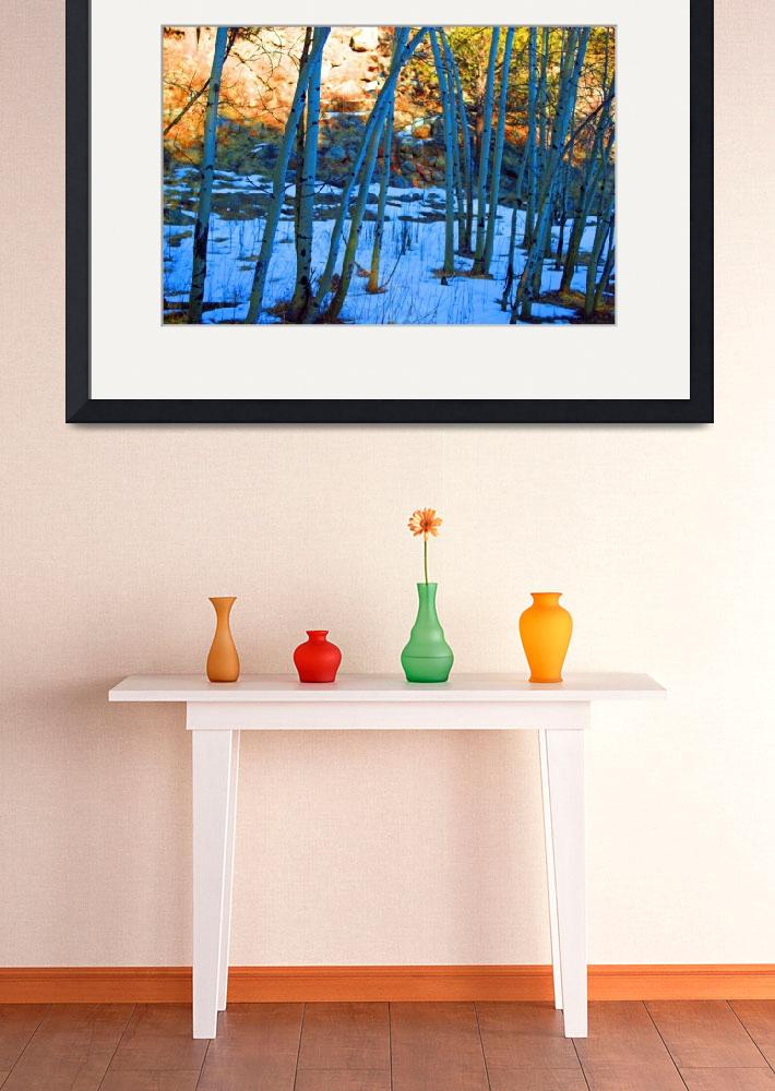"""""""Aspens in Winter&quot  (2010) by deewright"""