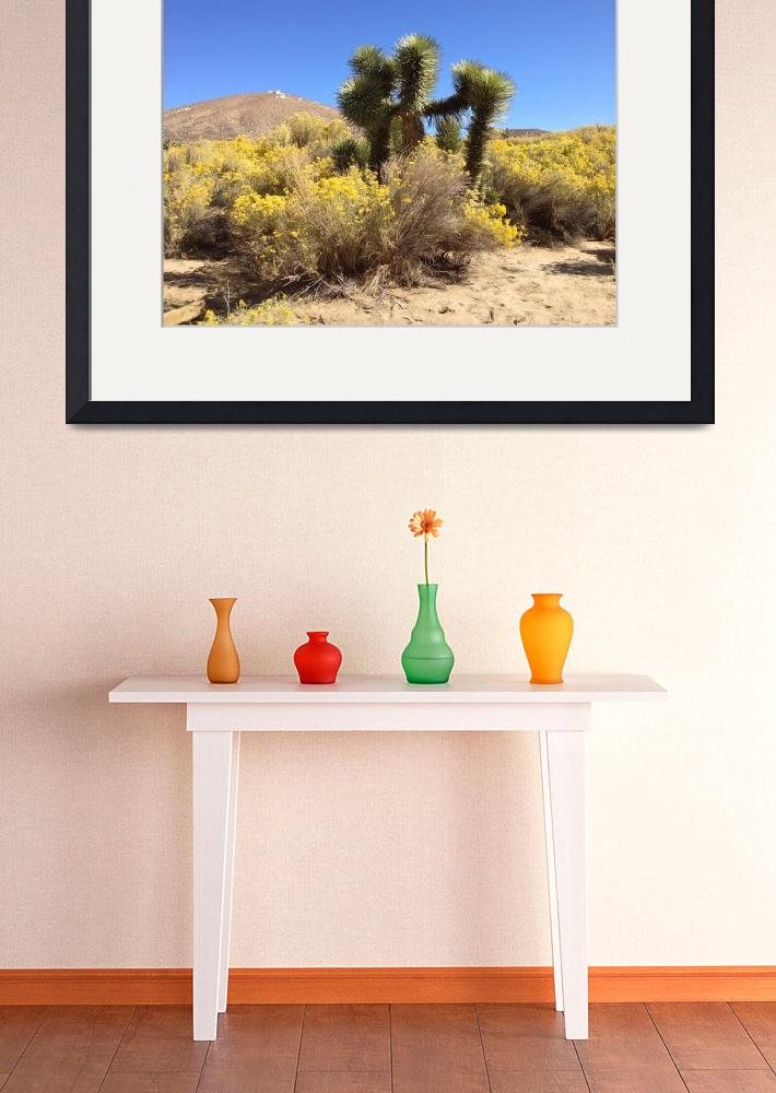 """Mojave Wild Flowers&quot  (2012) by FlaminCatDesigns"