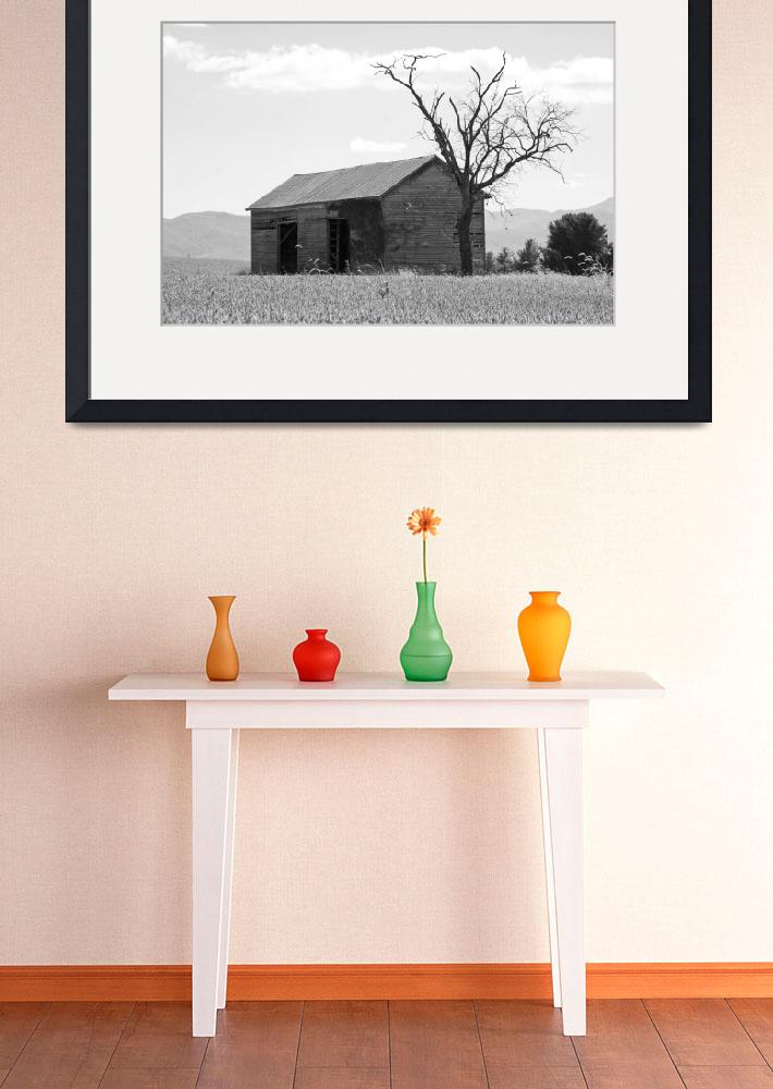 """""""Abandoned Barn and Tree black and white""""  (2012) by thewaltonsare"""