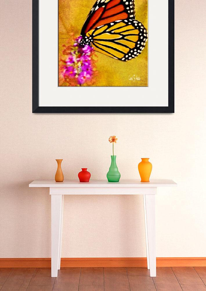 """Monarch Butterfly Wall Art""  (2013) by PhotographsByCarolFAustin"