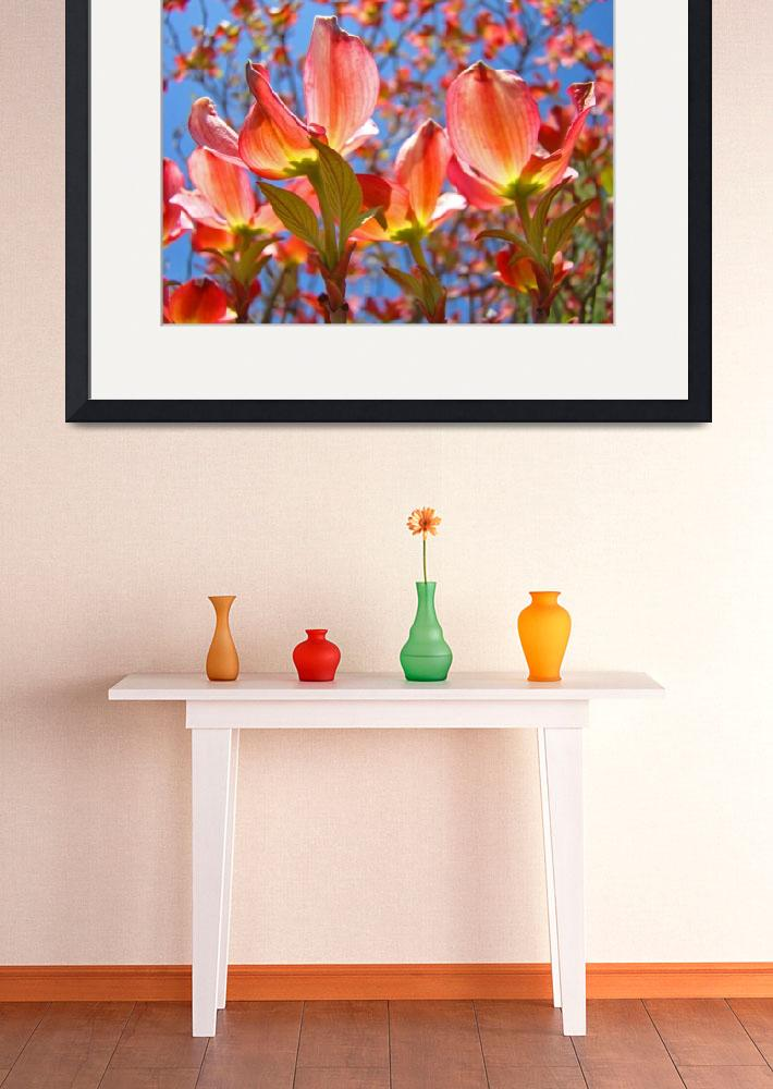 """""""Dogwood Pink Flowers Bright Colorful art print&quot  (2010) by BasleeTroutman"""