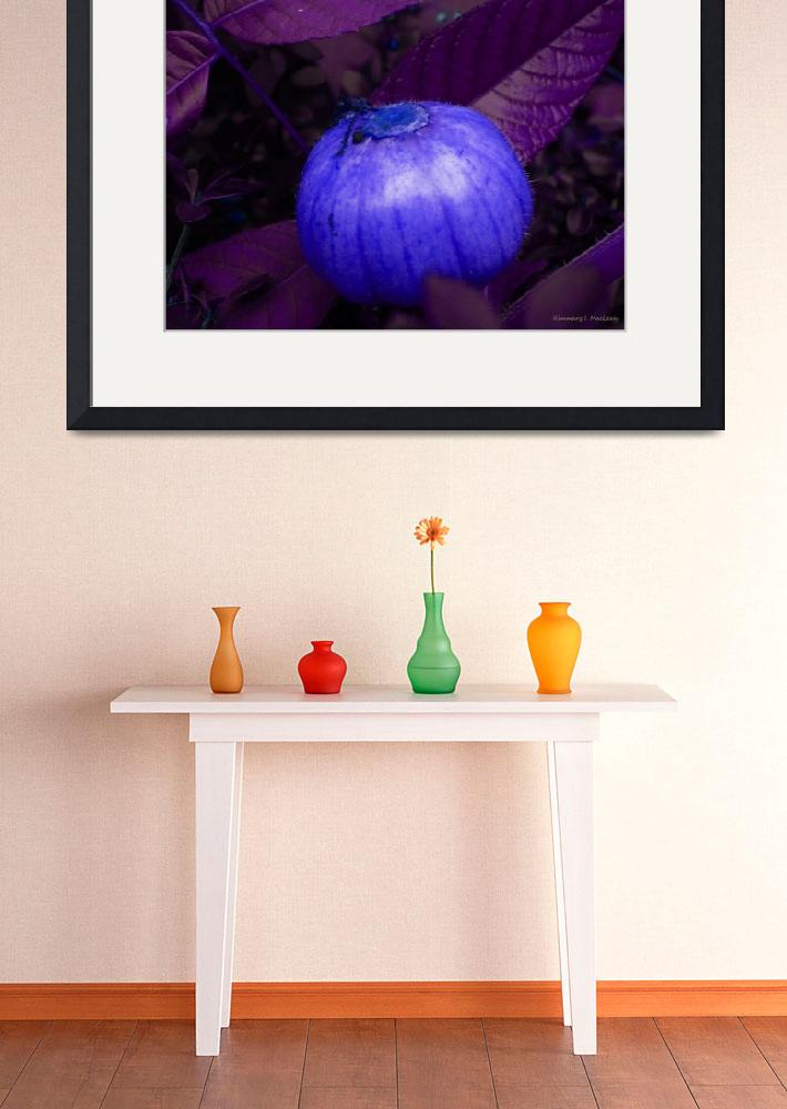 """""""Pumpkin in Blue""""  (2012) by Kimmary"""