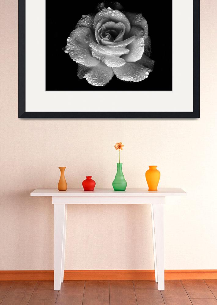 """""""Black and white beautiful flower&quot  by Art_by_Lilia"""