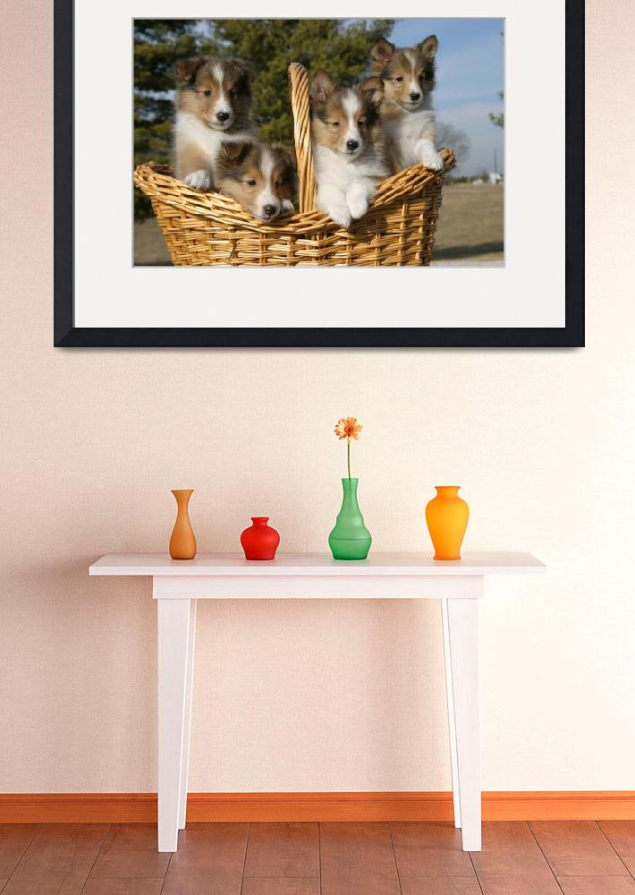"""""""Puppies in Basket&quot  (2008) by DCutshall"""