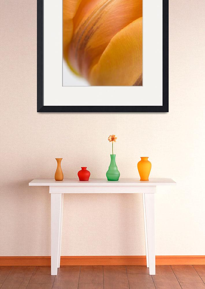 """""""Rhymes With Orange&quot  (2008) by JulieScholz"""