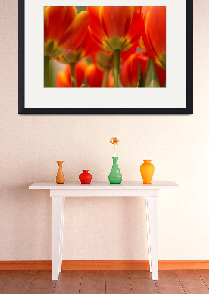 """Towering Tulips&quot  (2015) by julieandel"