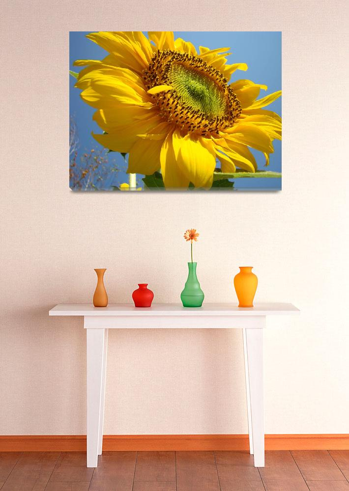 """""""Christmas Gift Gallery SUNFLOWERS Art""""  (2009) by BasleeTroutman"""